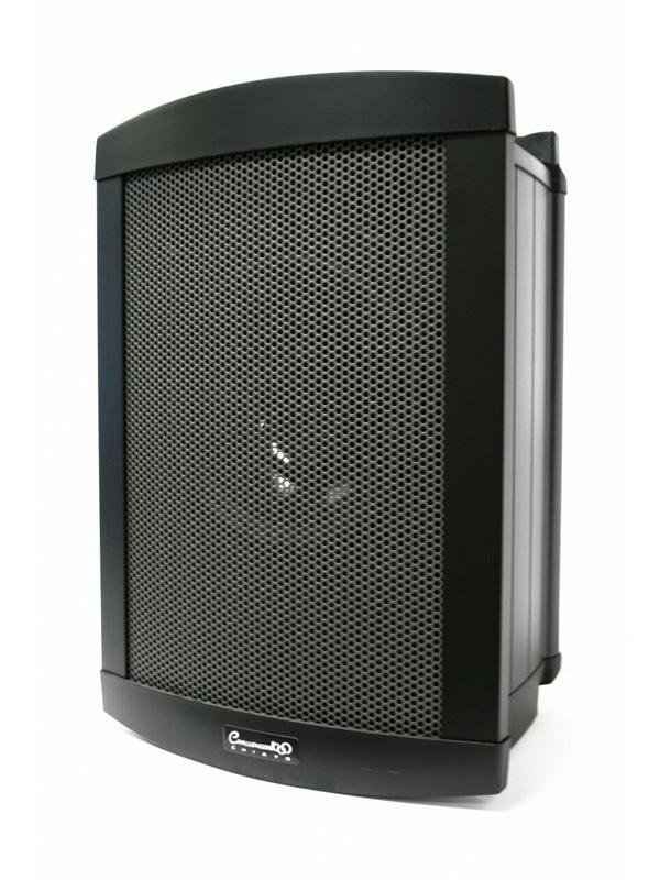 "200W Class-D amplifier to power a 10"" full-range driver."