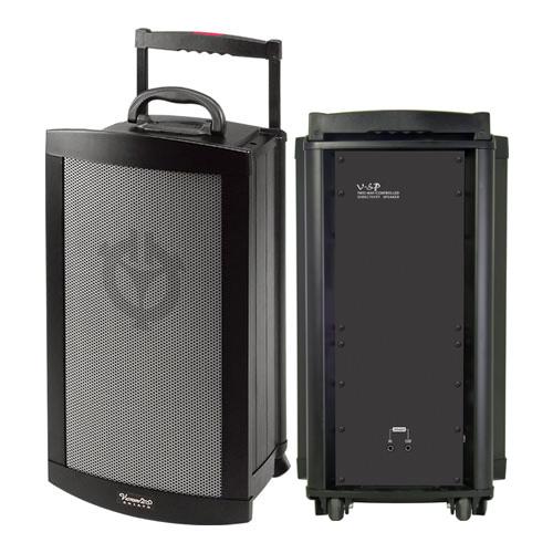 VICTORY V-SP Companion Passive Speaker